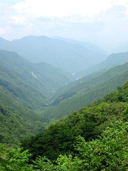 青崩峠から眺める断層谷