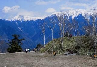5月のしらびそ高原から雪の南アルプスを望む