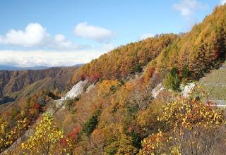 しらびそ峠付近から遠山谷を望む