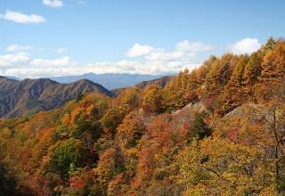 らびそ峠付近から遠山谷を望む